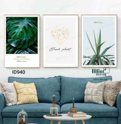 bộ 3 tranh fresh plant