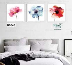 bộ 3 tranh hoa nhiều màu nền trắng
