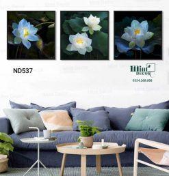bộ 3 tranh hoa sen xanh về đêm