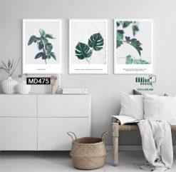 bộ 3 tranh vẻ đẹp của lá