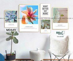 bộ 5 tranh sắc màu thực vật